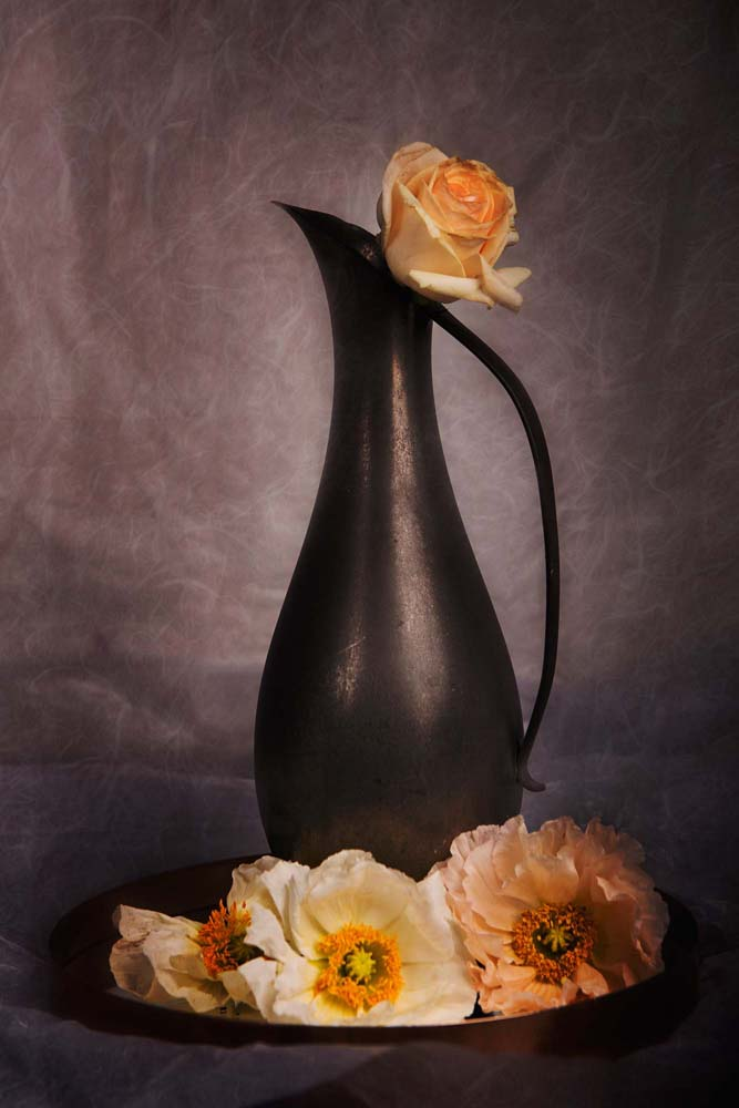 Poppies Jug and Rose I